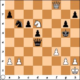 Lynch-Halstead 1986, White to move and win